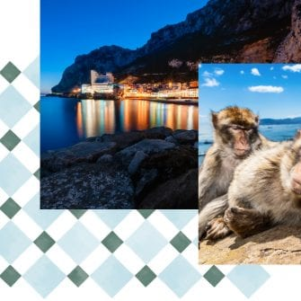 Macaque Monkeys Lounging In Gibraltar - The Eliott Hotel